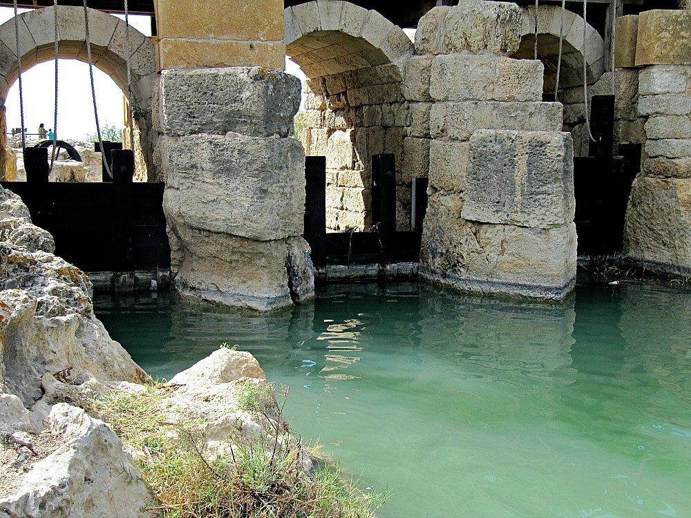 Taninim River Nature Reserve