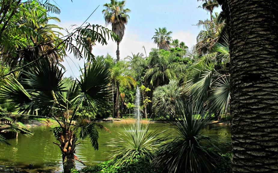 Tropical Garden (in Park HaYarkon)