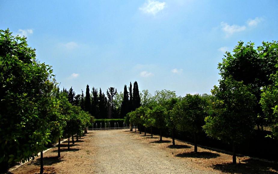 Trimmed Garden (in Park HaYarkon)