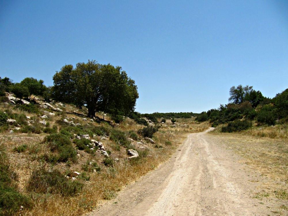 Ella Valley - Tel Azekah