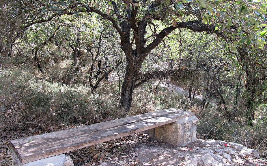 Alonei Yitzhak Nature Reserve