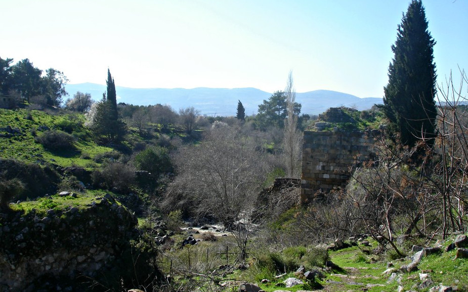 Hermon Stream - Banias