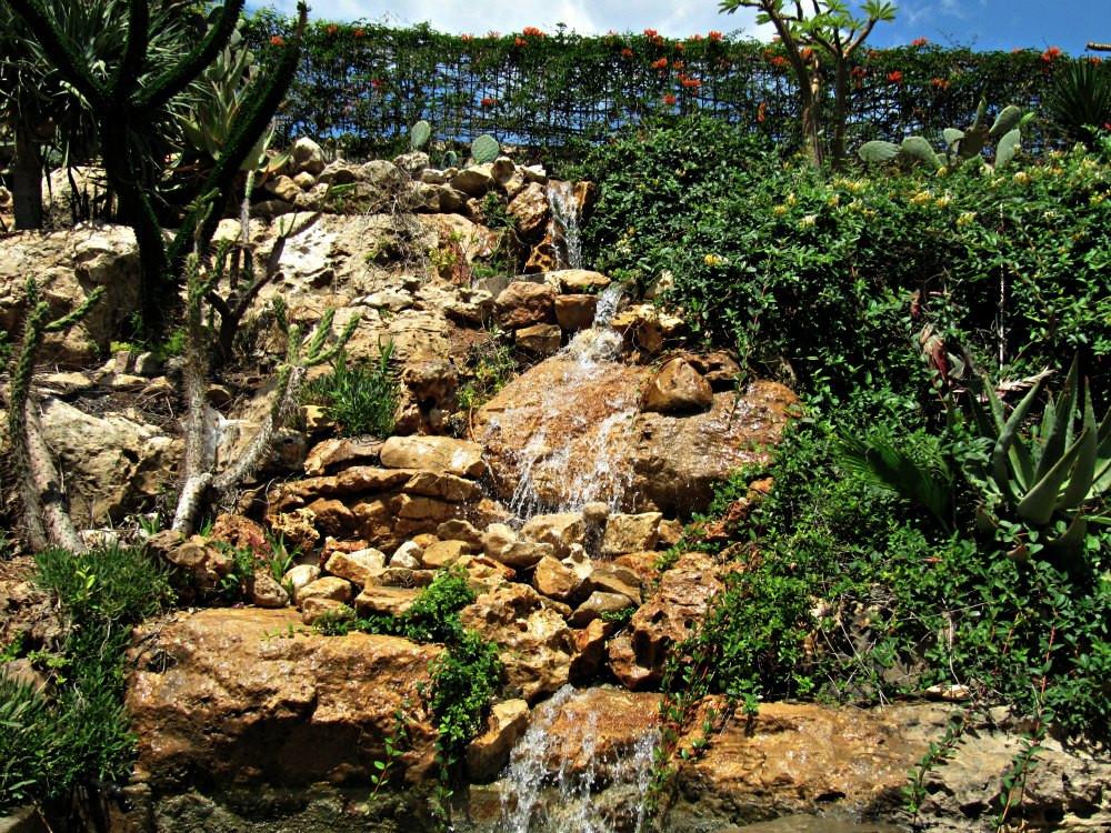 Cactus Garden in Holon