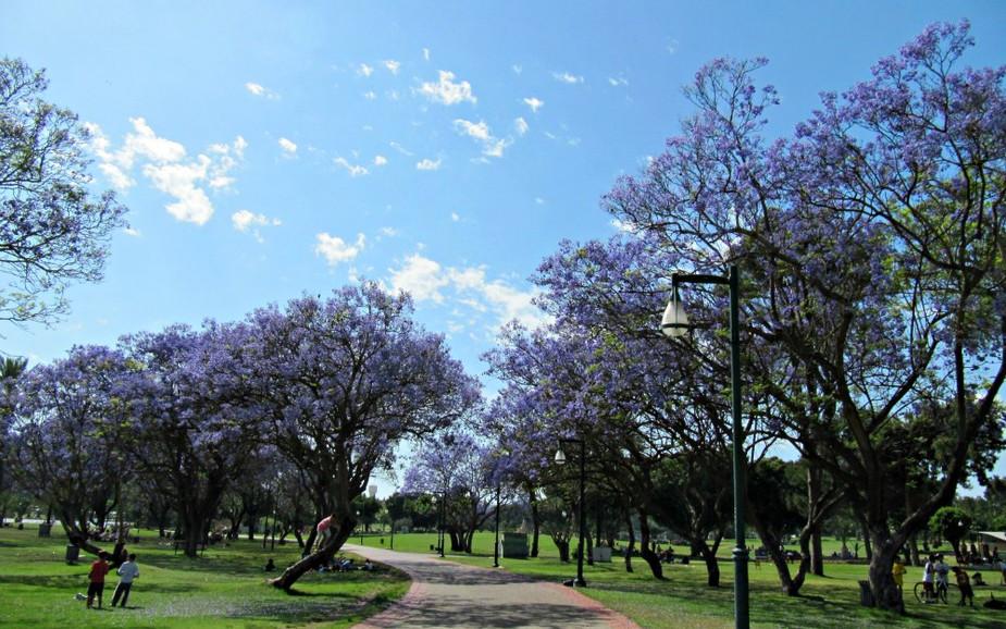 Ramat Gan Park Leumi