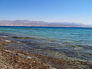 Eilat Coral Beach Nature Reserve