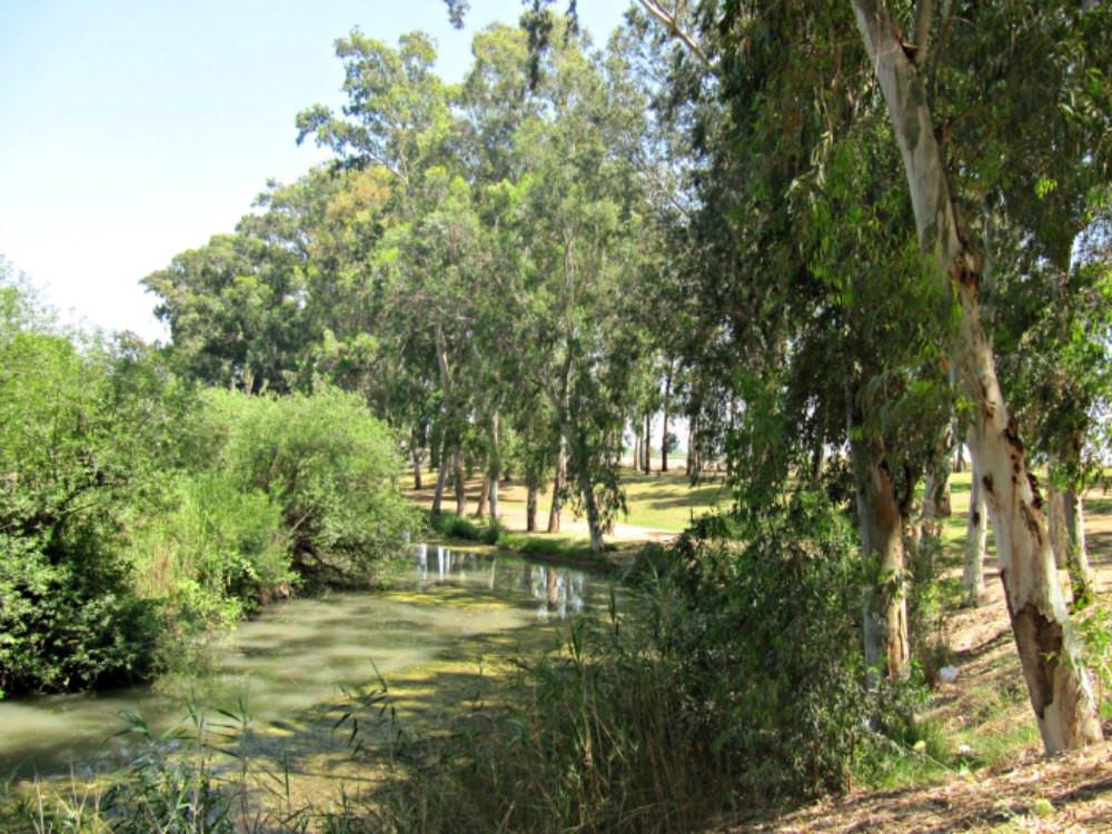 Yarkon National Park - Mekorot HaYarkon / Spring of the Yarkon