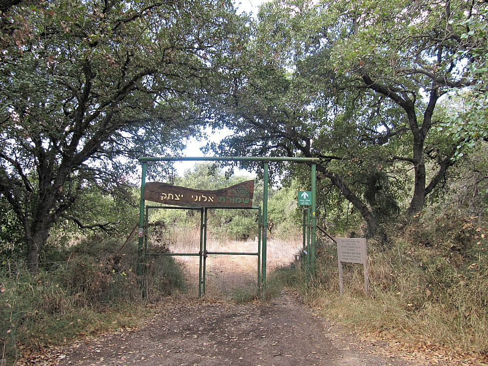 Alonei Yitzhak Nature Reserve