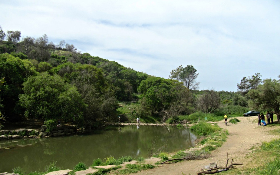 Nahal Oren National Park