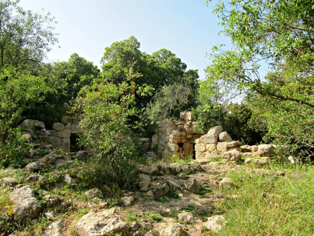 Seadim Ruins in Aminadav Forest