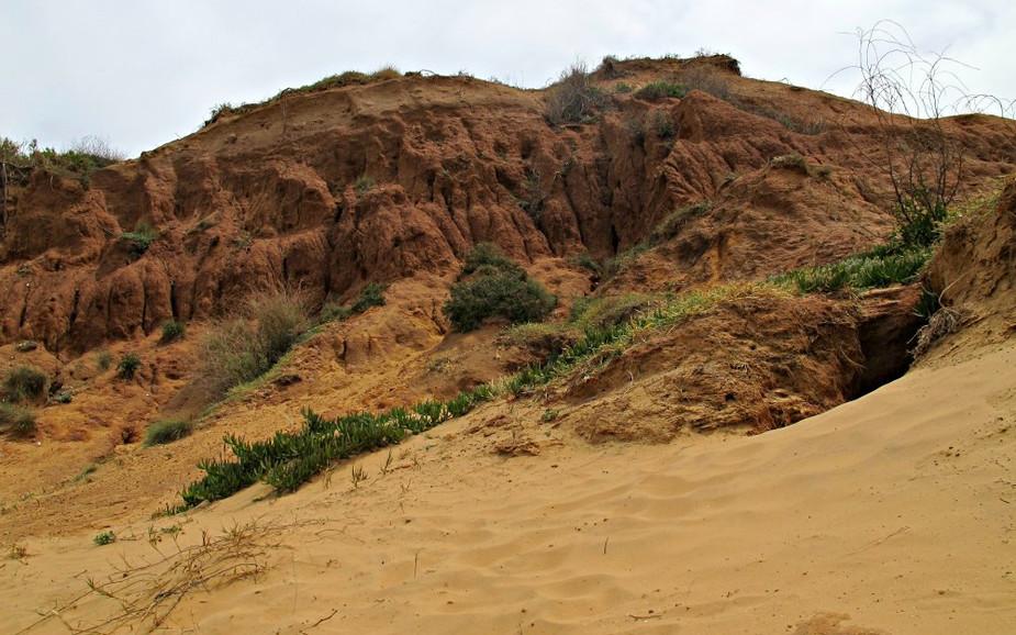 Dunes of Sharon Beach National Park