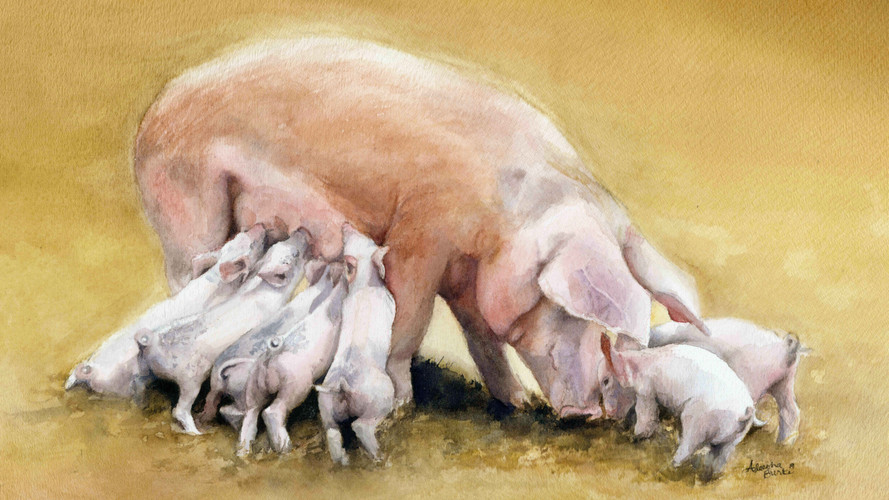 5x7Momma Pig and Babies.jpg