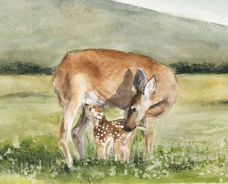 Nursing Deer Doe Painting