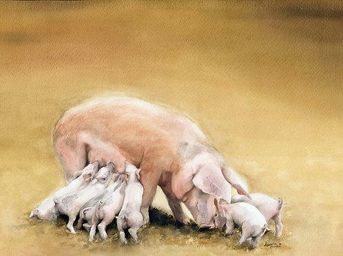 Nursing Pigs Painting