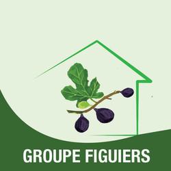 FIGUIERS-logo