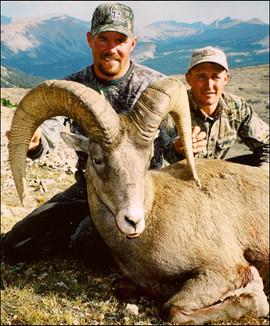 sheep-hunt2008-12.jpg