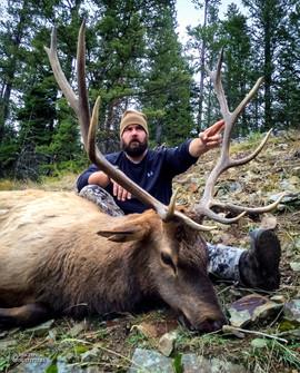 elk-hunt2016-09.jpg