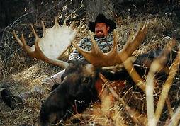 wyoming-moose06.jpg