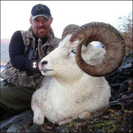sheep-hunt2008-04.jpg