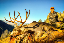 mule-deer-hunt2016-08.jpg