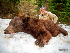 spring-black-bear2011-03.jpg