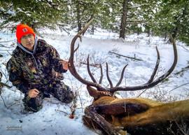 elk-hunt2016-06.jpg