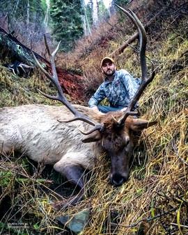 elk-hunt2016-08.jpg