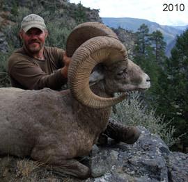 sheep-hunt2010-01.jpg