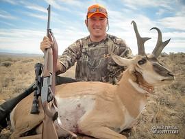 antelope2012-02.jpg