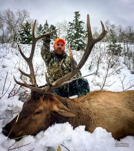 elk-hunt2016-10.jpg