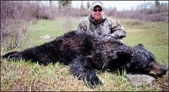 spring-black-bear2008-03 (1).jpg