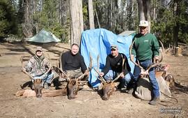elk-hunt2012-04.jpg