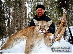 non-typical-mountain-lion17.jpg