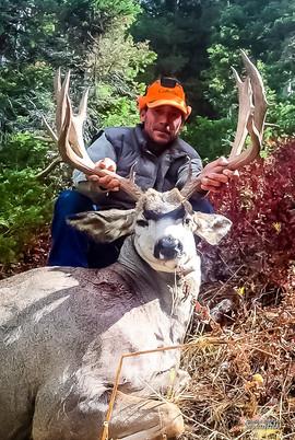 mule-deer-hunt2016-06.jpg