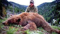 spring-black-bear-index01.jpg