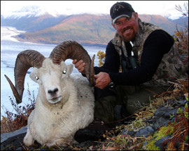 sheep-hunt2008-03.jpg