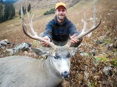 mule-deer-hunt2014-34.jpg
