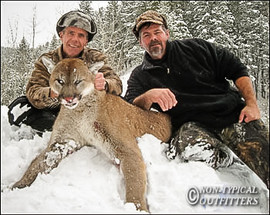 non-typical-mountain-lion13.jpg