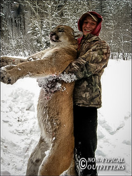 non-typical-mountain-lion14.jpg