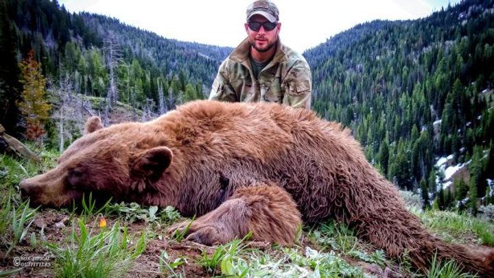 spring-black-bear-index01-600x338.jpg