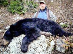 spring-black-bear2008-06.jpg