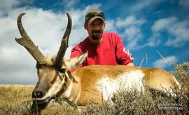 antelope2010-04.jpg