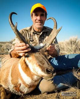 antelope2010-03.jpg