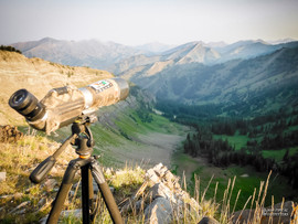 scouting-for-2012-28.jpg