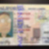 california driver's license.jpg
