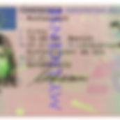 german driving license for sale.jpg