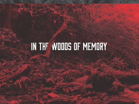 """Foreword Reviews: """"In the Woods of Memory"""""""