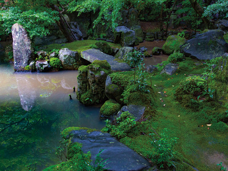 """""""Japanese Garden Notes"""" featured in My Modern Met article"""