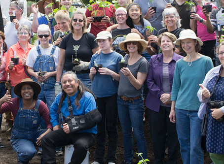 Planting with Purpose at Santiago/St. James, Oakland