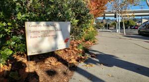 "Fall Into Haiku"": A Seasonal Poetry Celebration in Albany, California"