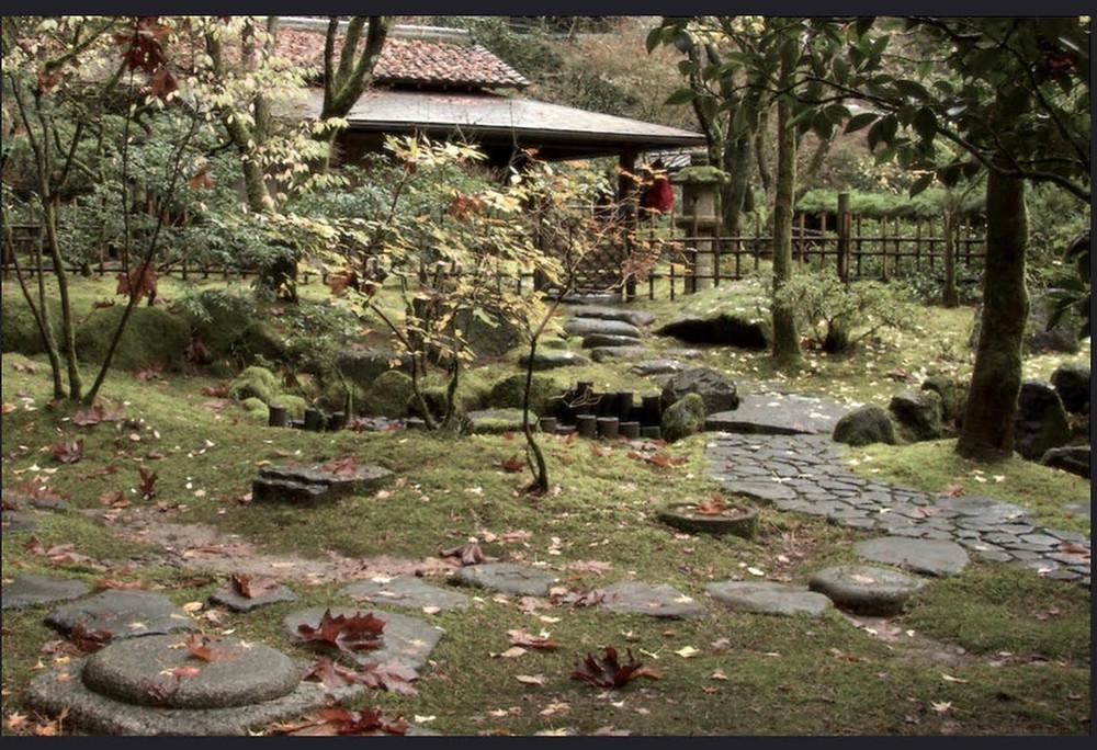 "Stone Bridge Cafe: ""The Tea Master"""
